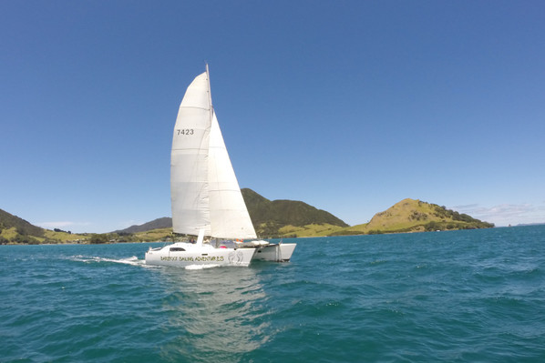 Bay of Islands Sundowner Cruise deals