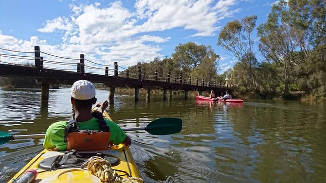 Swan River Kayak Tour
