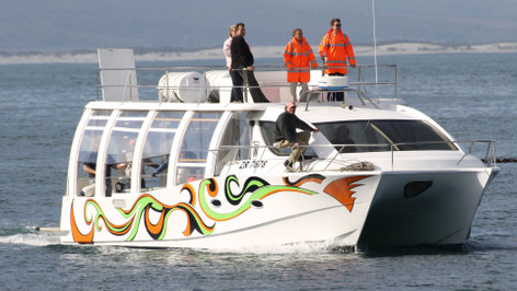 Whale Watching Tour Cape Town - July To August