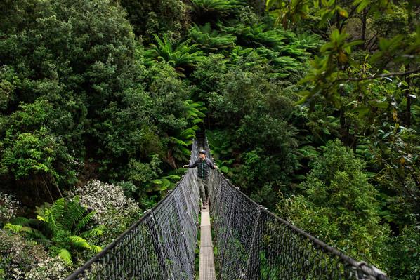 tasmania nature tour.jpg