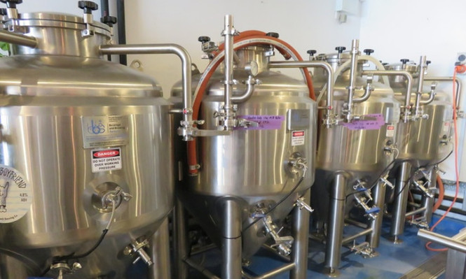 Sunshine Coast Private Brewery Tour