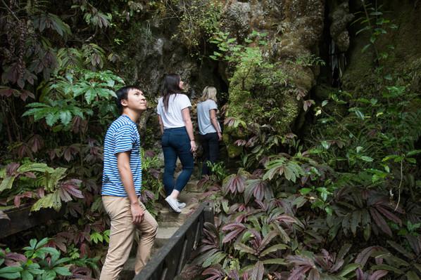 aranui cave tour deal