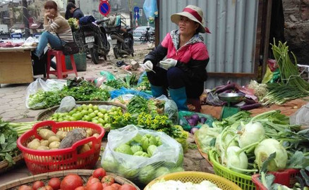 Traditional Vietnamese Cooking Class