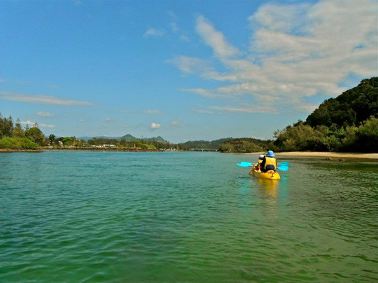 brunswick river kayaking