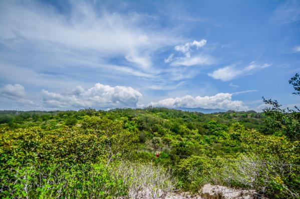 rainforest-rincon-de-la-vieja