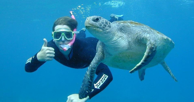 Snorkel Tour Julian Rocks