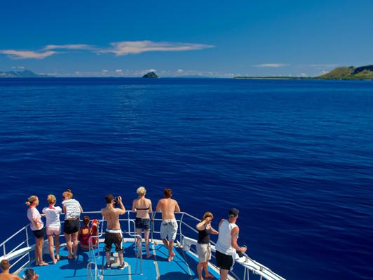 fiji cruises tours