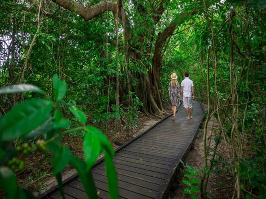 Great Barrier Reef & Green Island Adventure Deals