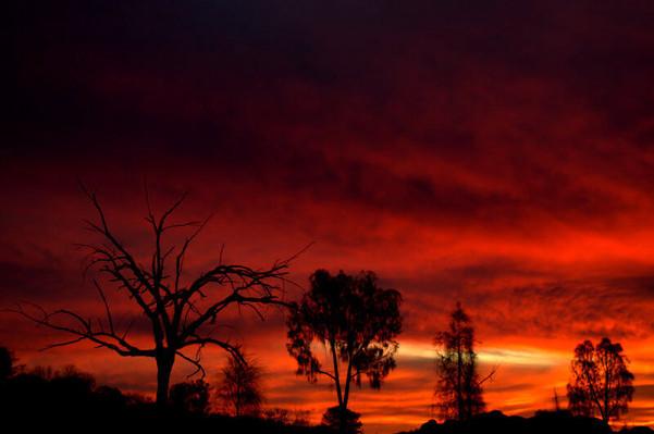 Alice Springs sunset.jpg