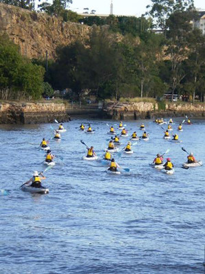 Brisbane River Kayaking adventure