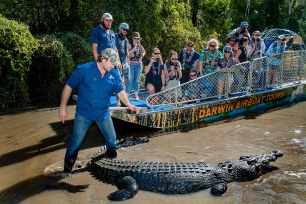 Top End Crocodile Tour