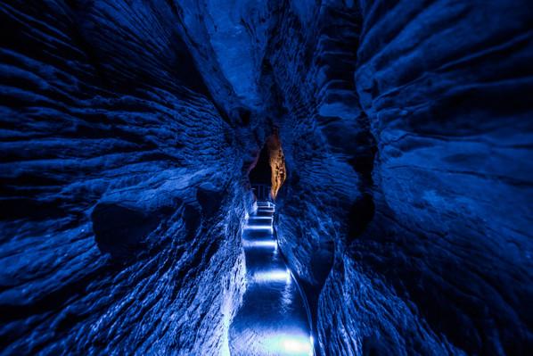 Waitomo cave tours