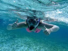 Fremantle Snorkelling Adventure