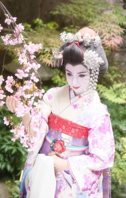 kyoto maiko dress up cultural experience