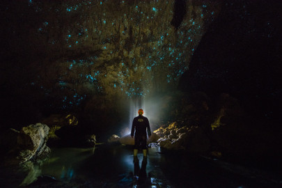 Waitomo Glowworm Caves Tour