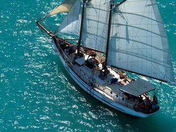1D Whitsundays Day Sail Snorkelling & Whitehaven Beach