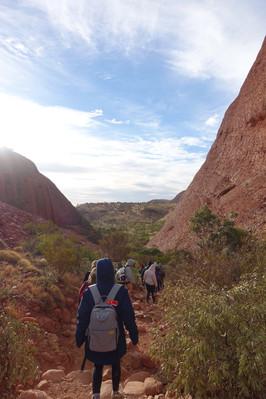 walk outback tour