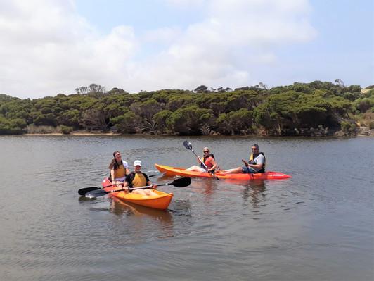 Kangaroo Island Guided Kayak Tour Deals