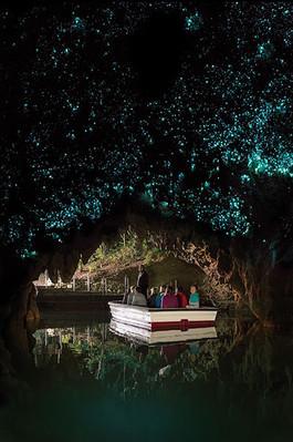 Hobbiton Movie Set Waitmo Caves Te Puia Tour