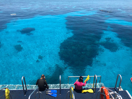 Dreamtime Dive & Snorkel Deals