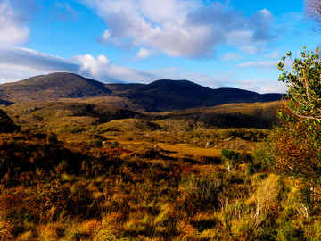 The Ring of Kerry Rail Tour From Dublin