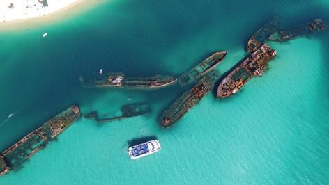 Moreton Bay Dolphin & Tangalooma Wrecks Cruise