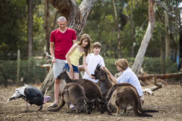 Kangaroo Island Tour from Adelaide