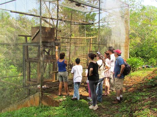 wildlife-sanctuary-quepos