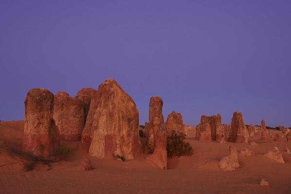 The Pinnacles, Nambung National Park, Cervantes,  Tourism WA 106510-56.jpg