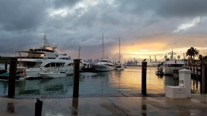Miami Skyline South Beach 90min Millionaires Cruise & Hop On Hop Off Bus Tour