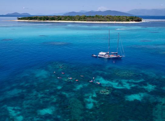 Barrier reef dive