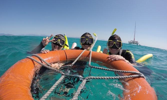 reef-daytripper-fun