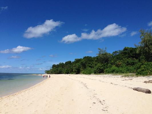 Green Island Eco Tour