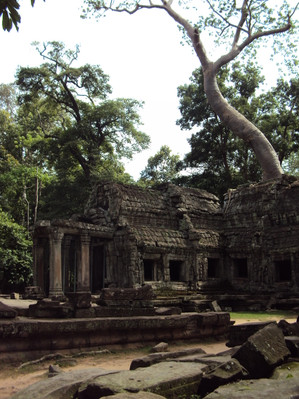 Ankor Wat tour discount
