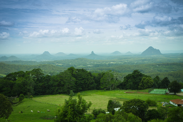 Sunshine Coast Hinterland And Noosa Adventure