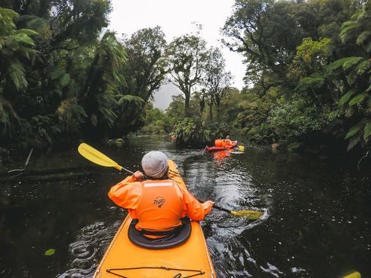 Kayak tour Milford Sound