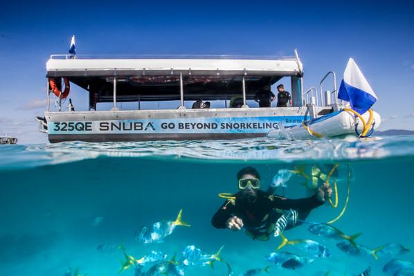 Green Island Reef Cruises Snorkelling