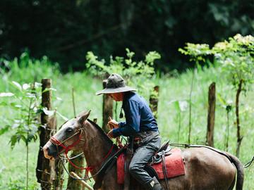 Horseback Riding Tocori Waterfalls & Ranch