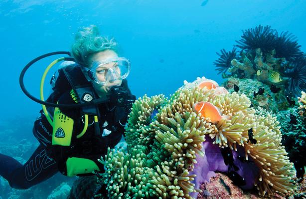 great-barrier-reef-activities