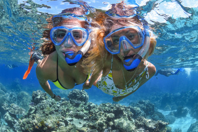 Great Barrier Reef Snorkelling Full Day Tour