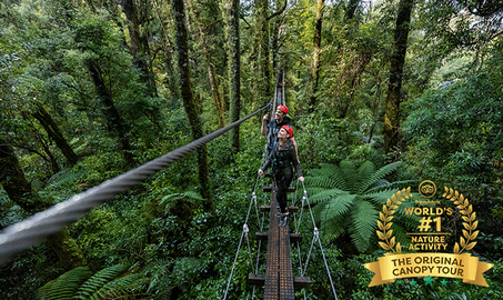 3 Hours Of Zipline Experience - Rotorua