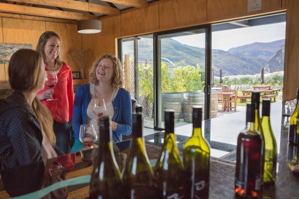 best nz wine tour