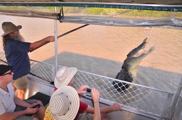 jumping crocodile lichfield park tours