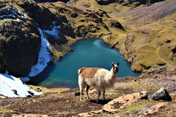 lares trek 4 days & 3 nights