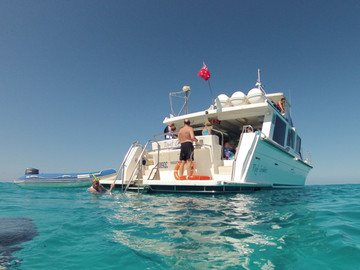 Full Day Snorkel Or Intro Dive Outer Great Barrier Reef