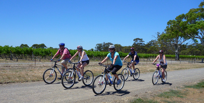 Hills, Vines and Wines by mountain bike adventure tour