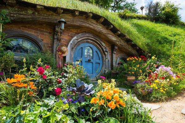 Hobbiton movie set tour adventure
