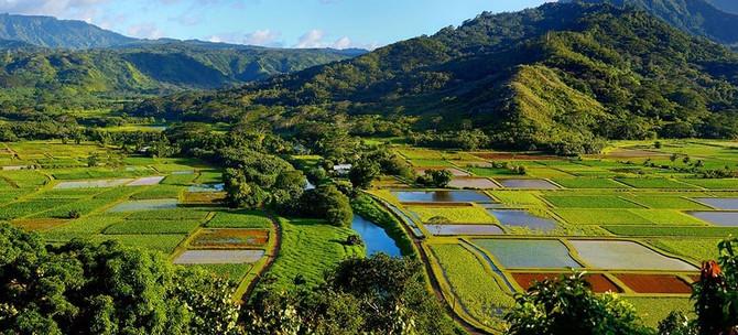 Kauai Movie Adventure Tour Deals