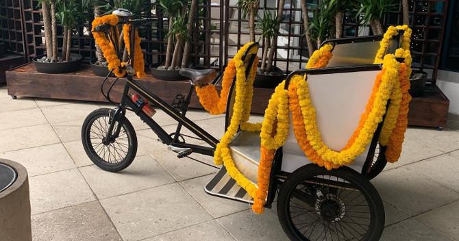 Miami Beach Art Deco Pedicab Tour