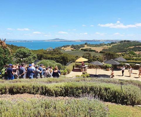 vineyard tour on Waiheke Island